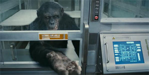 Rise Of The Planet Of The Apes, Trailer