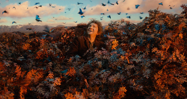 Bilbo Baggins Desolation of Smaug