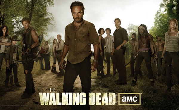 The Walking Dead Poster Andrew Lincoln