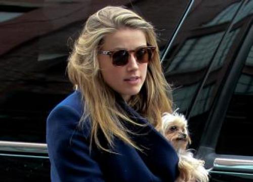 Amber Heard's Billionaire Boyfriend 'Very Attentive' To Her