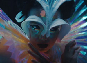 Bjork - The Gate Video
