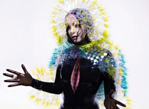 Bjork - Vulnicura Album Review
