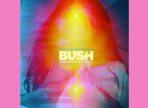 Bush - Black And White Rainbows Album Review