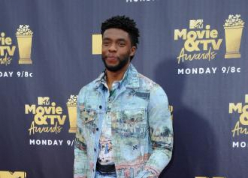 Chadwick Boseman Says Moviegoers' Reaction To Black Panther Made Film 'Special'