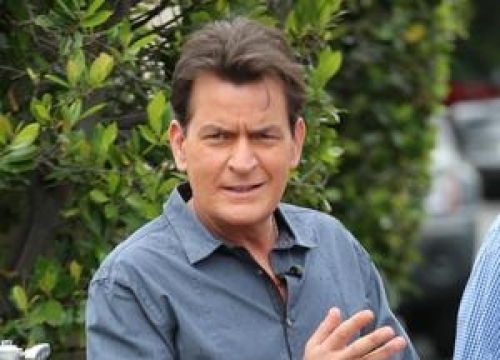 Charlie Sheen Puts Custom-made Car On Ebay