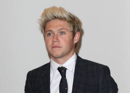 Niall Horan Eyeing Move Into Folk Music