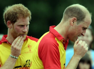 Prince Harry And Prince William Were Set To Reunite With Diana After Several Weeks