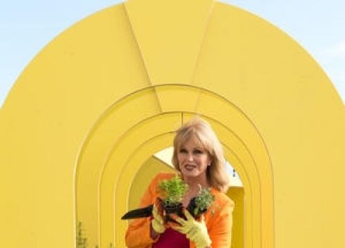 Joanna Lumley Pays Tribute To Patrick Macnee