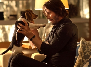 Good News Keanu Fans: 'John Wick 2' Is In Development