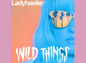 Ladyhawke - Wild Things Album Review