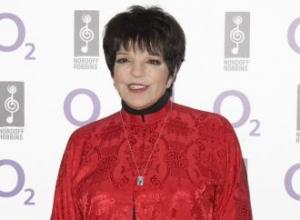 Liza Minnelli checks into rehab