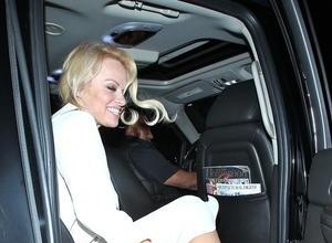 Pamela Anderson's Restraining Order Bid Delayed