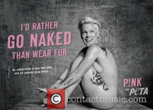 Pink Hits Back At Weight Gain Critics