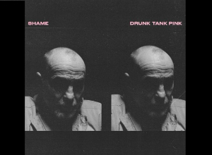 Shame - Drunk Tank Pink Album Review