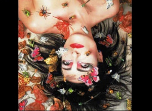 Album Of The Week: The 14th Anniversary of 'Mantaray' by Siouxsie Sioux