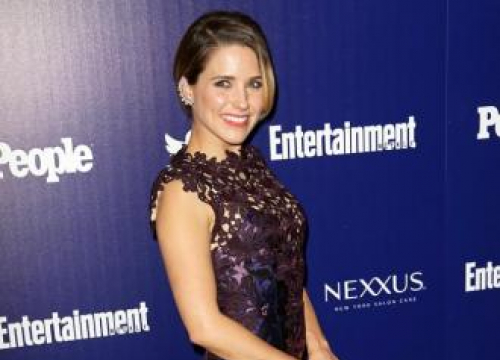 Sophia Bush 'Hit' Mark Schwahn After On-set Grope
