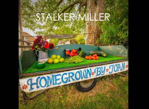 Stalker Miller - Homegrown By Joan Album Review