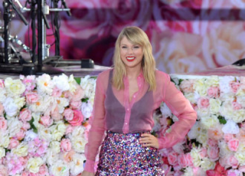 Taylor Swift Countersues Theme Park Owners