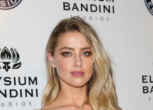 Amber Heard Keeps Smuggled Pet Pooches In Johnny Depp Divorce