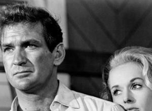 It's Farewell To Another Hollywood Great! 'The Birds' Star Rod Taylor Dies At 84