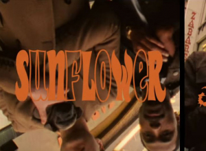 Vampire Weekend - Sunflower ft. Steve Lacy Video