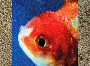 Vince Staples - Big Fish Theory Album Review