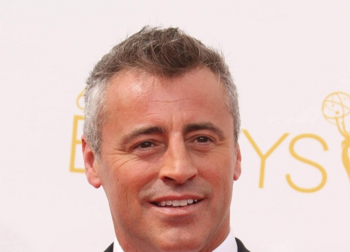Matt Leblanc Finds Another Friend In New Sitcom
