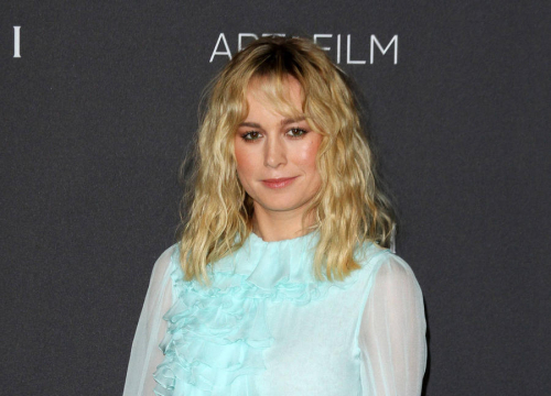 Brie Larson: 'Fame Is A Struggle For An Introvert Like Me'