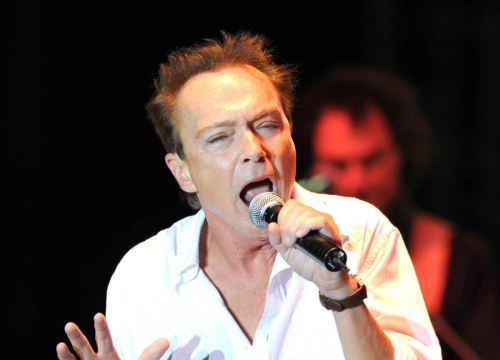 David Cassidy Goes Public With Dementia Battle