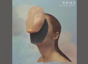Wilsen - I Go Missing In My Sleep Album Review