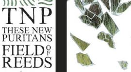 These New Puritans - Field Of Reeds Album Review