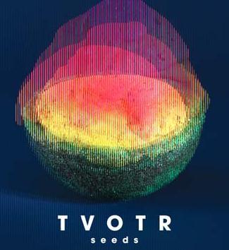 TV On The Radio - Seeds Album Review