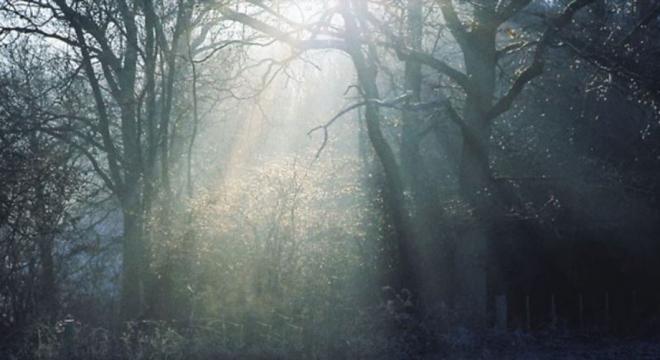 Wolf Alice - Heavenward Audio