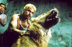 Amores Perros Movie Review