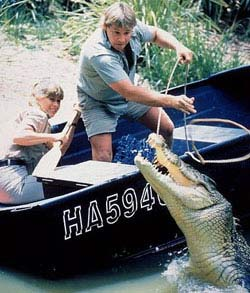 The Crocodile Hunter: Collision Course Movie Still