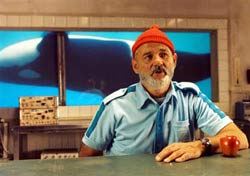 The Life Aquatic With Steve Zissou Movie Still