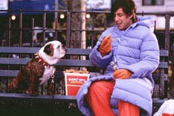 Little Nicky Movie Review