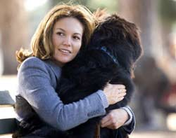 Must Love Dogs Movie Still