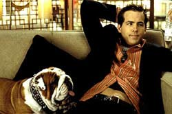 National Lampoon's Van Wilder Movie Review