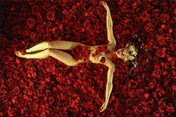 American Beauty Movie Review
