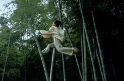 Crouching Tiger, Hidden Dragon Movie Still