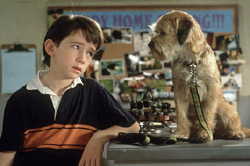 Good Boy! Movie Still
