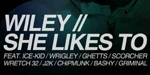 Wiley - She Likes To Video