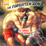 Aimee Mann - The Forgotten Arm - Audio Streams