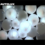 Autolux - Future Perfect - Album Review