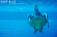 Film - Deep Blue  a natural history of the oceans' film review