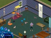 Sims Unleashed Review On PC @ www.contactmusic.com