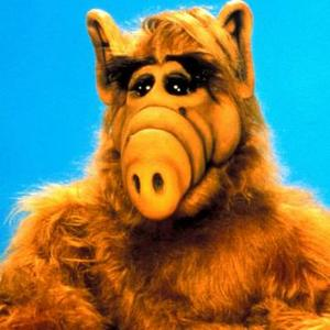 Plans Underway For Alf Movie