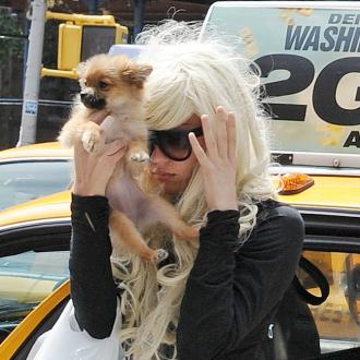Amanda Bynes Will Not Be Charged For Fire