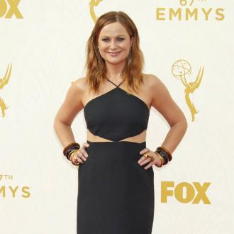 Amy Poehler has 'institutionalised misogyny'